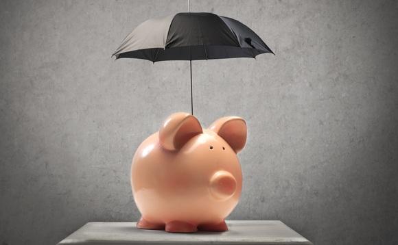 pig-umbrella-580x358